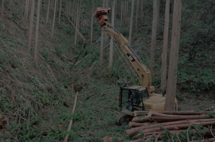 03 間伐材生産事業