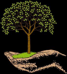 TOPICS TREE